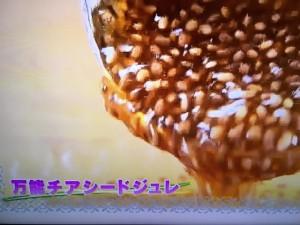 めざましテレビ チアシード