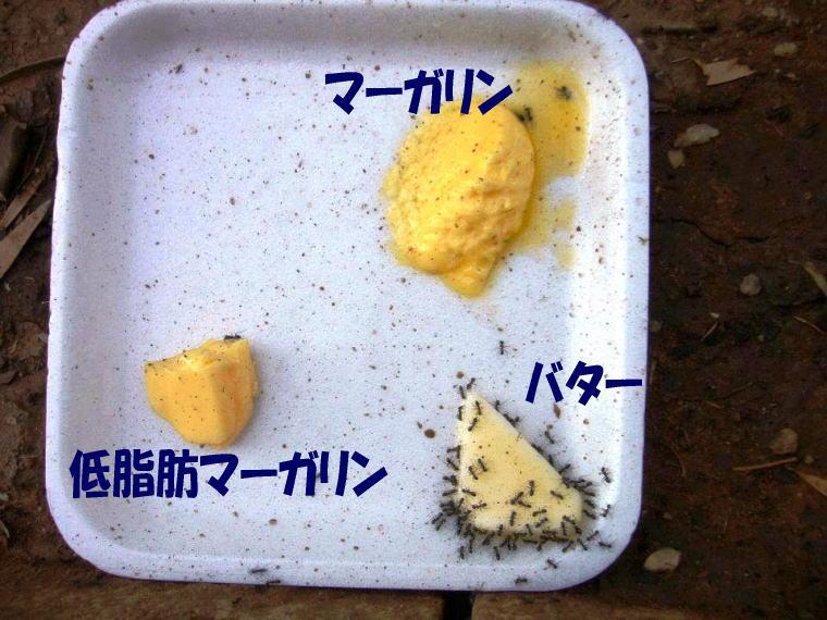 マーガリン トランス脂肪酸